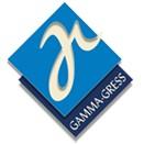 Gamma-Gress